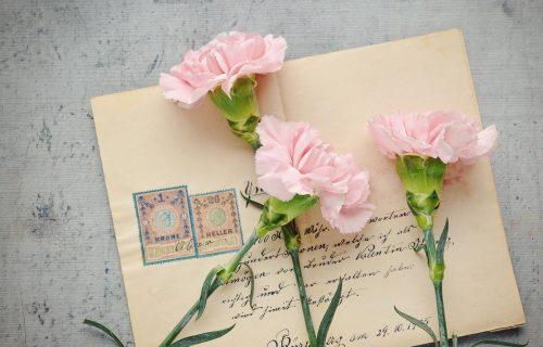 Pazite koji cvet poklanjate jer svaki krije svoju simboliku (FOTO)