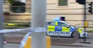 Jezive scene u parku tokom protesta: Nekoliko ljudi izbodeno, troje preminulo, uhapšen napadač (VIDEO)