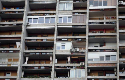 Ulaze u domove i seju CIJANID: Ova napast već hara Beogradom, postoji samo JEDNA odbrana